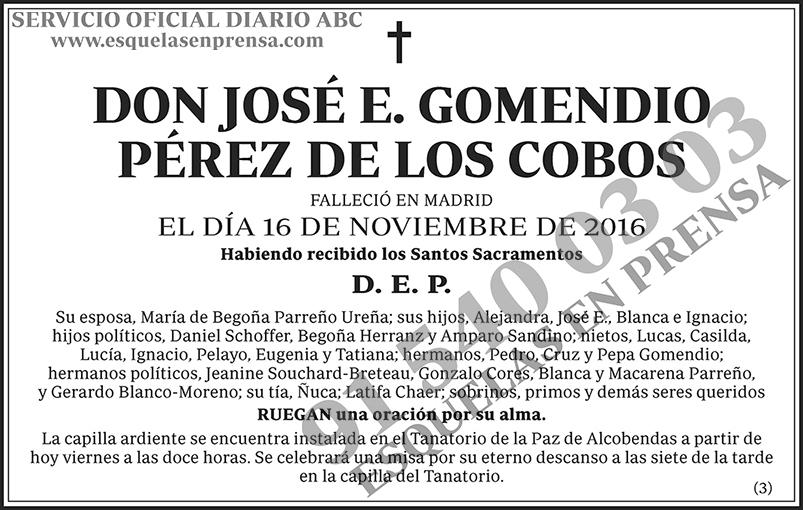 José E. Gomendio Pérez de los Cobos